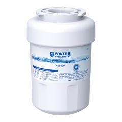 Waterspecialist Replacement for GE Refrigerator Water Filter MWF